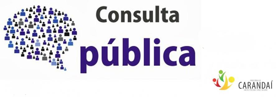 Consulta Pública do Plano Municipal de Atendimento Socioeducativo de Carandaí