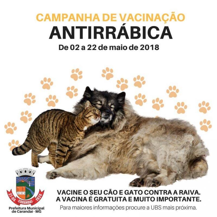 CAMPANHA DE VACINAÇÃO ANTIRRÁBICA EM CARANDAÍ